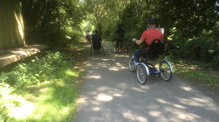 A person cycles a trike away from the camera down a path in a forest.